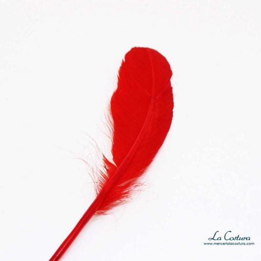plumas-acrilicas-pequenas-detalle
