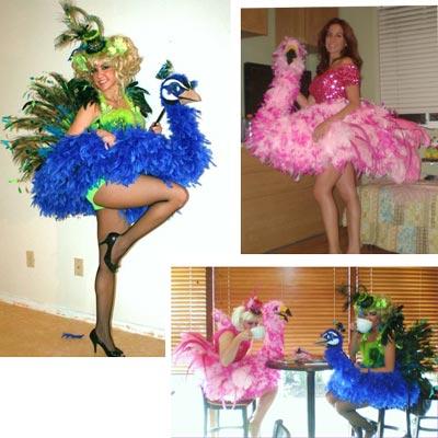 accesorios-para-lucir-disfraz-de-carnaval-parte-iv-pina-flamenco-pavo-real
